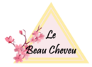 Normal_logo_le_beau_cheveu