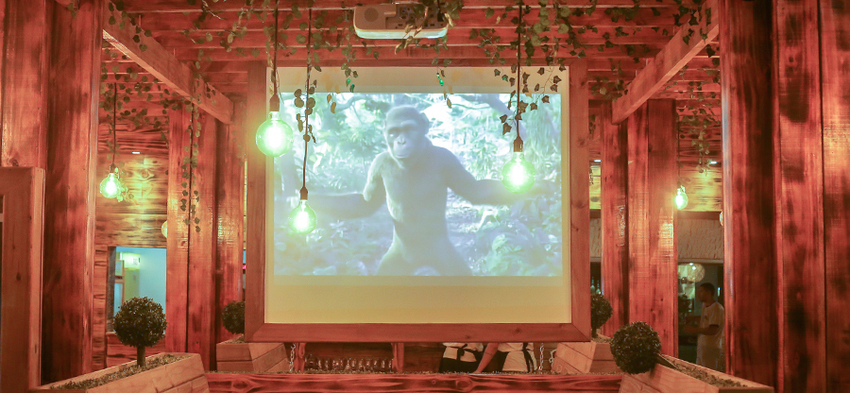 Normal_oferta-mundo-animal-lanches-batatao-animal-medio-calabresa-frango-bacon-carne-bovina-coracao-queijo-e-fritas6